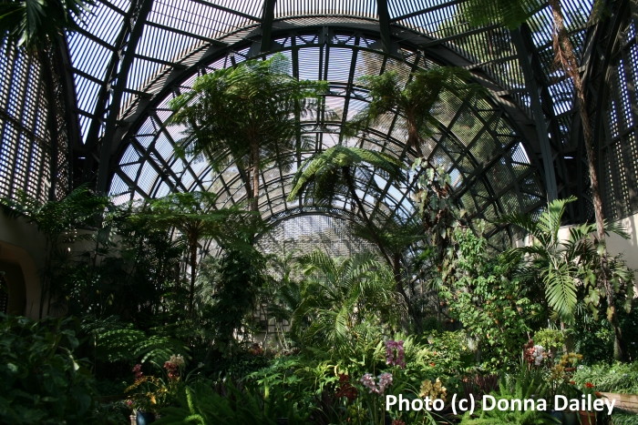 Inside the Botanical Building in Balboa Park, San Diego, California