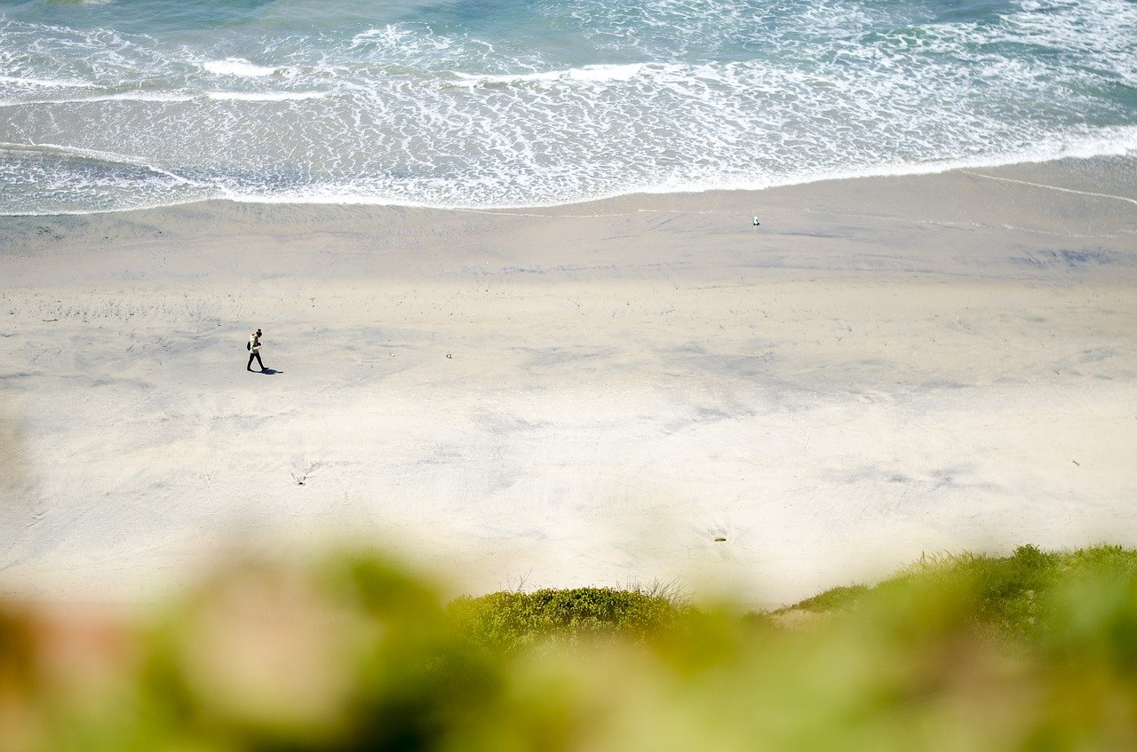 The Beach at Del Mar in California