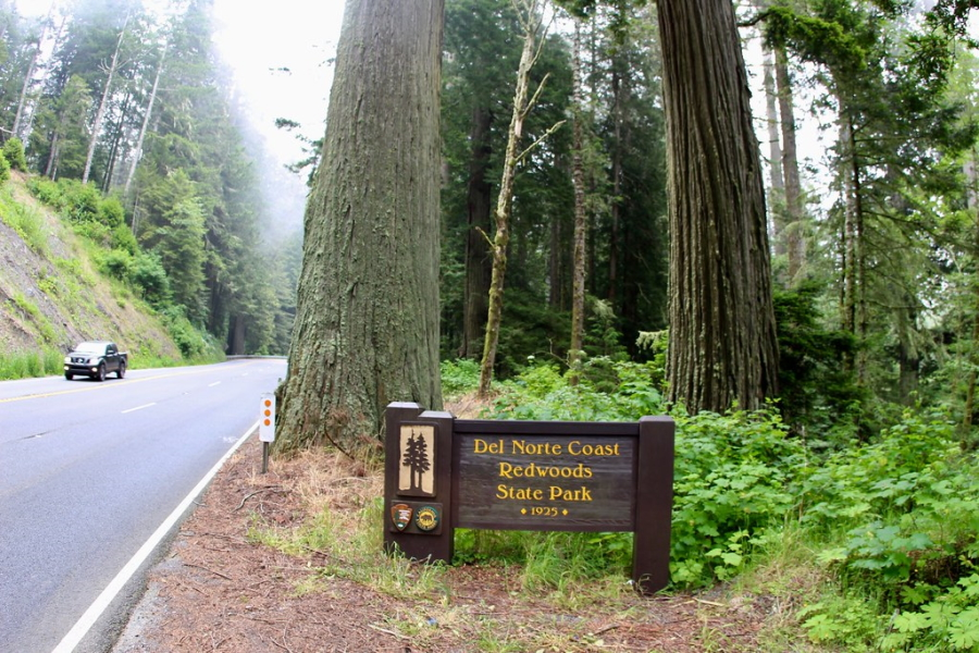 Entrance sign for the Del Norte Coast Redwoods State Park in California