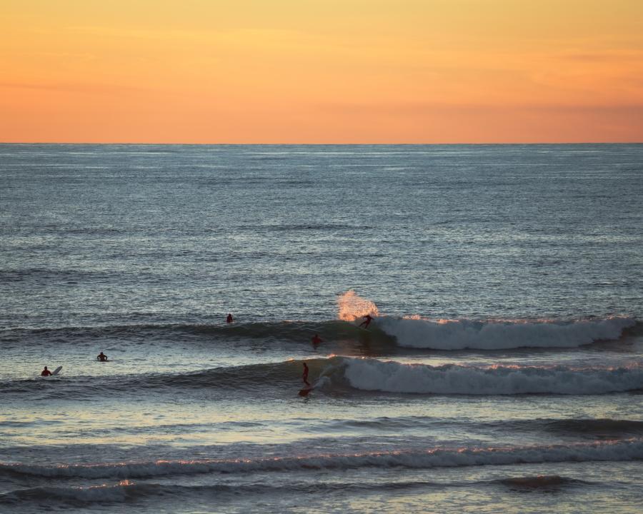 Surfing at Sunset in Encinitas