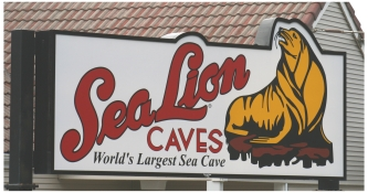 Florence Sea Lion Caves