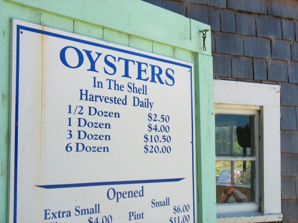 Buying Oysters in Long Beach in Washington, maybe the Longest Beach in the USA