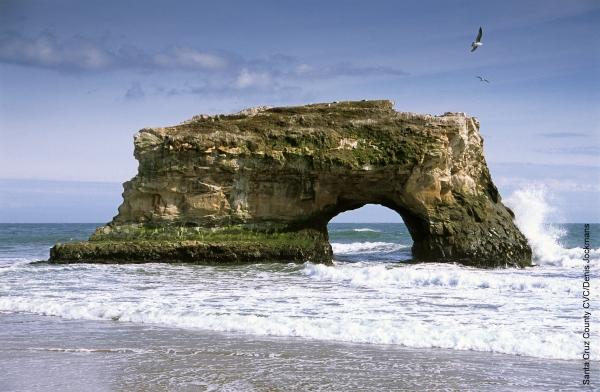 Natural Bridges State Beach near Santa Cruz, from https://www.pacific-coast-highway-travel.com/Santa-Cruz.html
