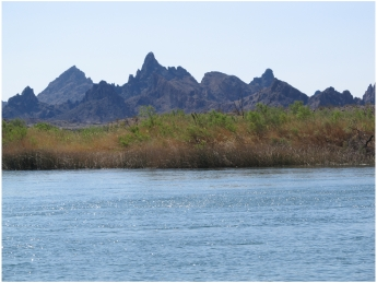 On the Colorado River at Pirate's Cove Resort near Needles in California, photo (c) Donna Dailey from https://www.pacific-coast-highway-travel.com/Colorado-River-Rides.html