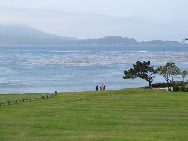 View along the 17-Mile-Drive from Carmel