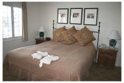 The Pet-Friendly Cypress Inn, Carmel, California