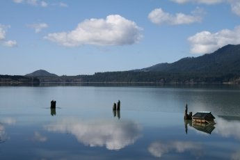 Lake Quinault in the Olympic National park, photo (c) Donna Dailey