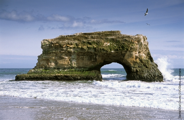 Natural Bridges State Beach near Santa Cruz, from https://www.pacific-coast-highway-travel.com/Santa-Cruz.html