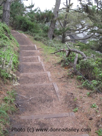 Lots of photos from our visit to the Point Lobos State Reserve near Carmel and Monterey: https://www.pacific-coast-highway-travel.com/Point-Lobos-State-Reserve.html