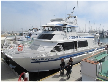 Santa Barbara Whale Watching with Condor Express