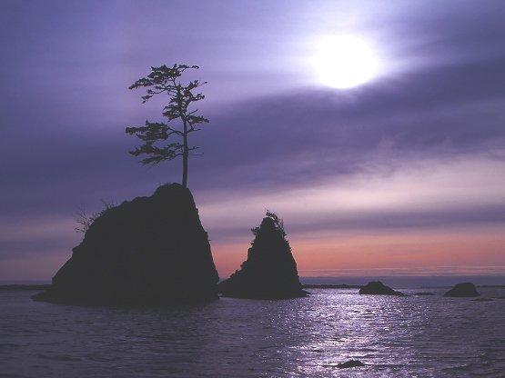 Tillamook Bay, from http://www.pacific-coast-highway-travel.com/Tillamook.html